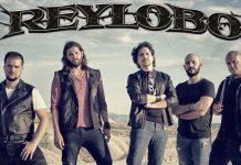 Reylobo